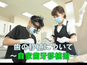 歯科 群馬 前橋 高崎 伊勢崎 桐生 太田 抜歯 歯の移植 インプラント セカンドオピニオン