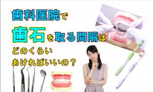 歯科 群馬 前橋 高崎 伊勢崎 桐生 太田 予防歯科 歯石 定期検診 歯周病