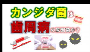歯科 群馬 前橋 高崎 伊勢崎 桐生 太田 歯周病の原因 カンジダ菌 真菌 歯周内科 ペリオバスター